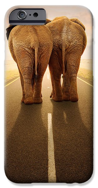 Elephants iPhone Cases - Going away together / travelling by road iPhone Case by Johan Swanepoel