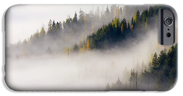 Fog Mist iPhone Cases - Gold in them Hills iPhone Case by Mike  Dawson