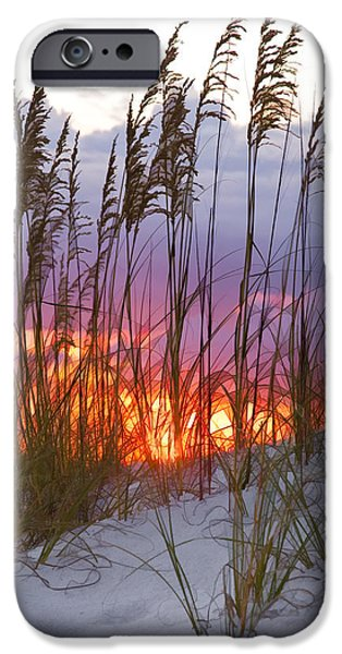 Amber iPhone Cases - Golden Amber iPhone Case by Janet Fikar