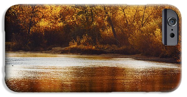 Fall iPhone Cases - Golden autumn along Boise River Boise Idaho iPhone Case by Vishwanath Bhat
