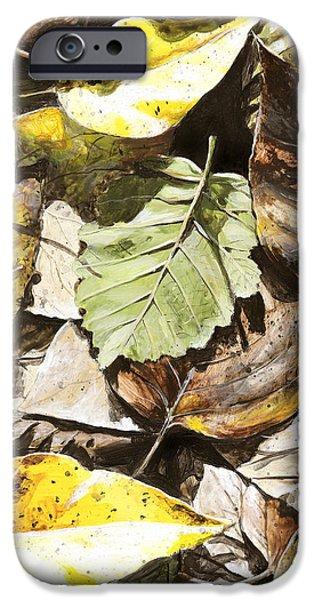 Autumn iPhone Cases - Golden Autumn - Talkeetna Leaves iPhone Case by Karen Whitworth
