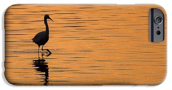 Little iPhone Cases - Golden Egret iPhone Case by Paul Neville
