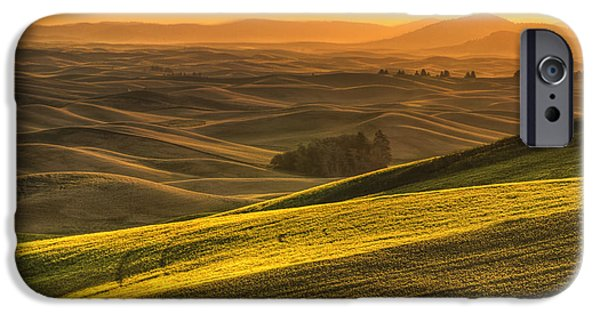 Crops iPhone Cases - Golden Grains iPhone Case by Mark Kiver