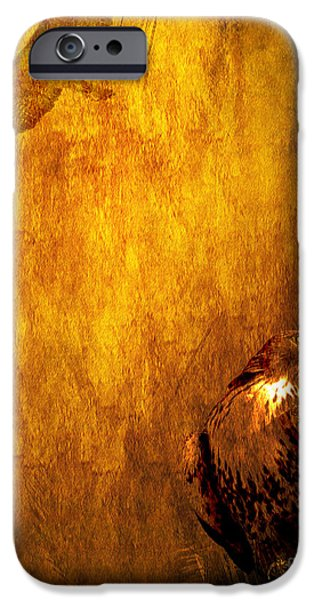 Red Tail Hawk Digital Art iPhone Cases - Golden Hawk 4 iPhone Case by Wingsdomain Art and Photography