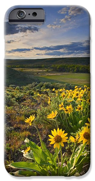 Golden Hills iPhone Case by Mike  Dawson