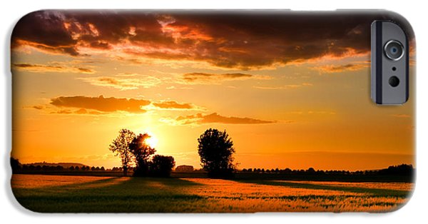 Crops iPhone Cases - Golden Sunset iPhone Case by Franziskus Pfleghart