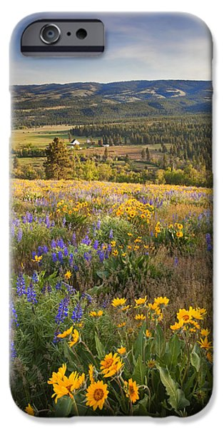 Meadow iPhone Cases - Golden Valley iPhone Case by Mike  Dawson