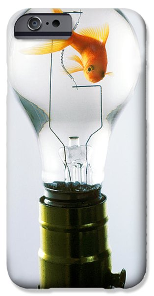 Amusements iPhone Cases - Goldfish in light bulb  iPhone Case by Garry Gay