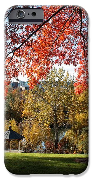Gonzaga with Autumn Tree Canopy iPhone Case by Carol Groenen