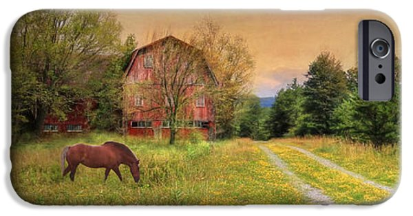 Horse iPhone Cases - Good Grazing iPhone Case by Lori Deiter