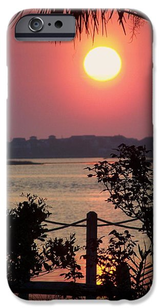 Good Morning iPhone Case by KAREN WILES