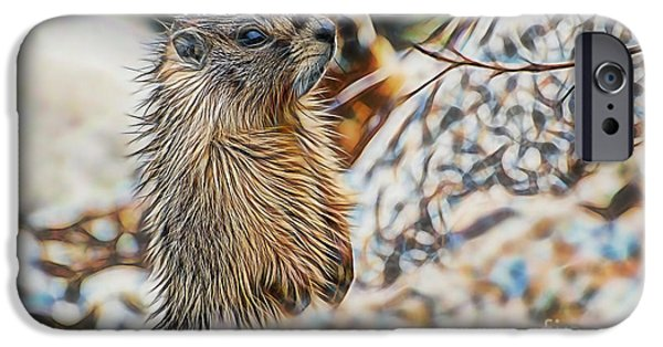 Groundhog iPhone Cases - Good Morning iPhone Case by Marvin Blaine