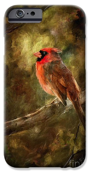 Birds iPhone Cases - Goodbye Mr. Pip iPhone Case by Lois Bryan
