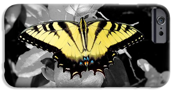 Bugs Pyrography iPhone Cases - Gorgeous Details  iPhone Case by Hannah Underhill