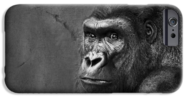Power iPhone Cases - Gorilla Stare - Black and White iPhone Case by Nikolyn McDonald