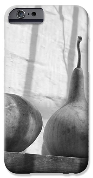 Gourds on a Shelf iPhone Case by Lauri Novak