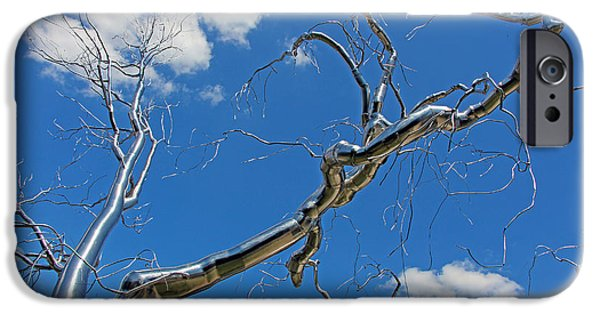 Cora Wandel iPhone Cases - Graft -- A Stainless Steel Tree iPhone Case by Cora Wandel