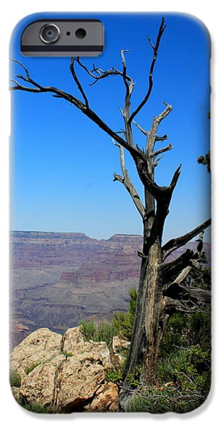 Ledge iPhone Cases - Grand Canyon Matthers Point South Rim iPhone Case by Earl  Eells a