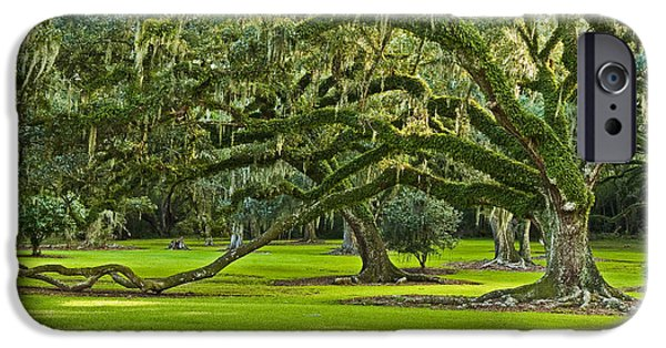 South Louisiana Photographs iPhone Cases - Grand Lady iPhone Case by Scott Pellegrin