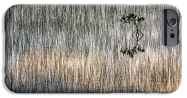 Rhizophora Mangle iPhone Cases - Grass and Mangrove iPhone Case by Robert Grauer