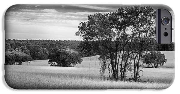 Buildings iPhone Cases - Grass Safari-bw iPhone Case by Marvin Spates