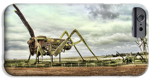 Child iPhone Cases - Grasshoppers in the Field iPhone Case by Phyllis Taylor