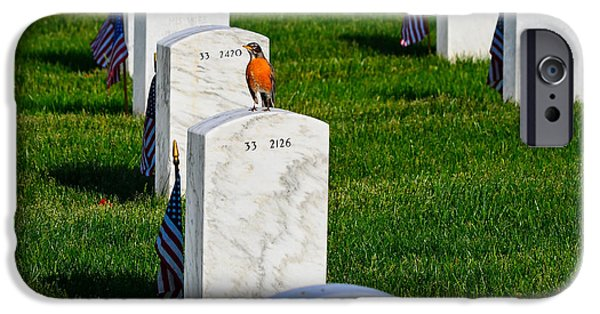 Patriots iPhone Cases - Grave Robin iPhone Case by Jeff at JSJ Photography