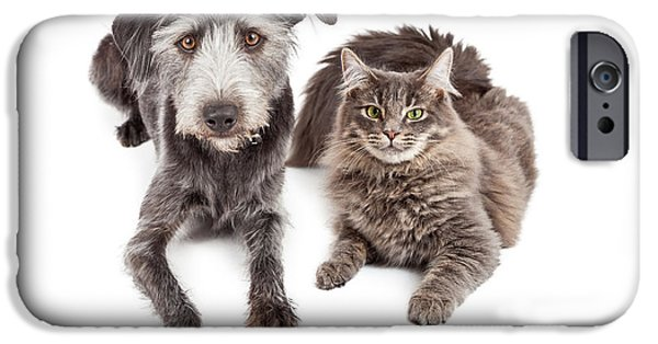 Gray Hair iPhone Cases - Gray Cat and Crossbreed Dog iPhone Case by Susan  Schmitz