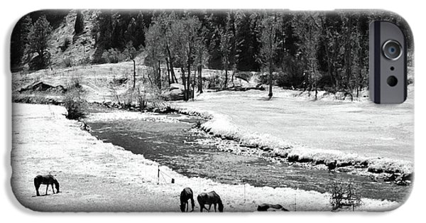 Creek Mixed Media iPhone Cases - Grazing BW iPhone Case by Angelina Vick