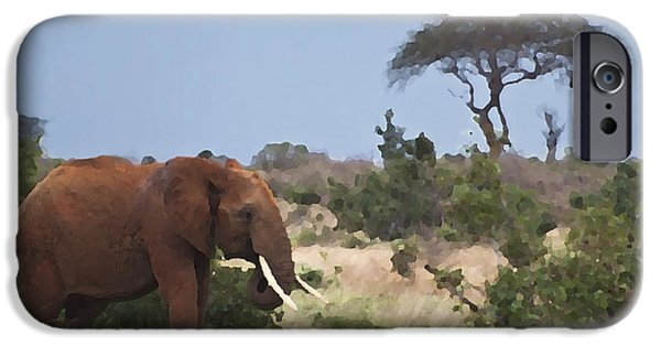 Elephants iPhone Cases - Grazing Elephant iPhone Case by Meike Hofstetter