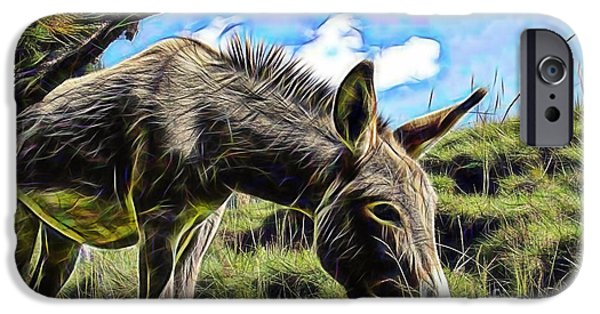 Donkey iPhone Cases - Grazing iPhone Case by Marvin Blaine
