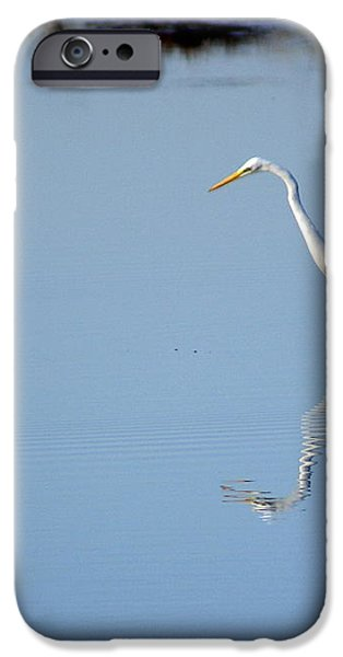 Great Blue 2 iPhone Case by Marty Koch