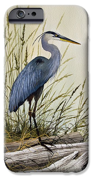 Framed iPhone Cases - Great Blue Heron Splendor iPhone Case by James Williamson