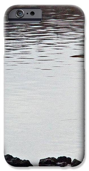 Great Blue Heron Wading 3 iPhone Case by Douglas Barnett