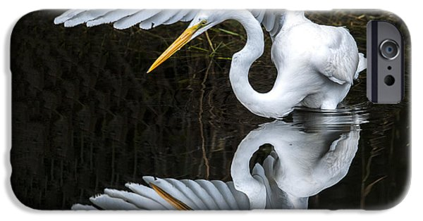 Fauna iPhone Cases - Great Egret Reflection iPhone Case by William Bitman