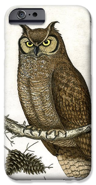 Pines Mixed Media iPhone Cases - Great Horned Owl iPhone Case by Charles Harden