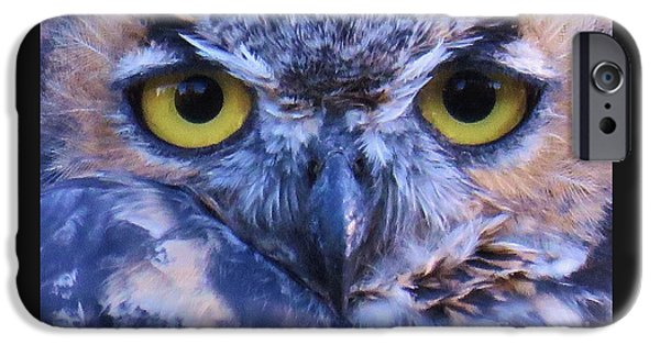 Disc iPhone Cases - Great Horned Owl Macro iPhone Case by Michele Penner
