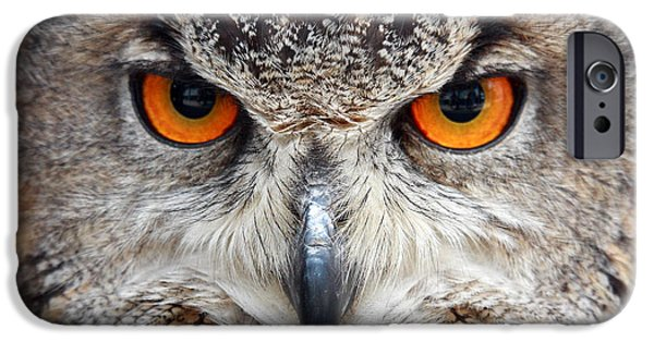 Horn iPhone Cases - Great horned Owl iPhone Case by Pierre Leclerc Photography