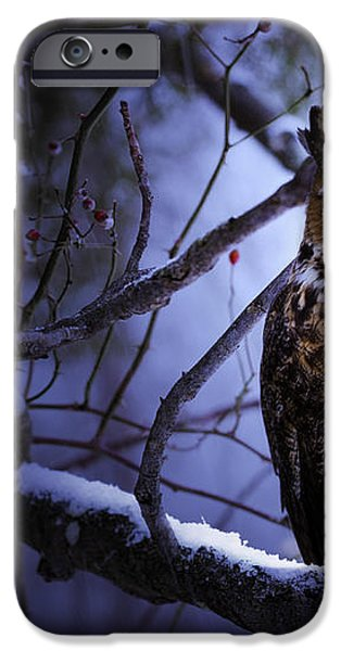 Great Horned iPhone Case by Ron Jones