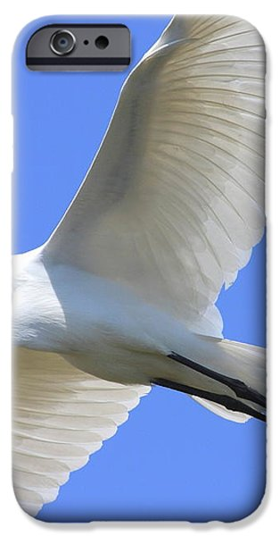 Great White Egret In Flight . 40D6850 iPhone Case by Wingsdomain Art and Photography