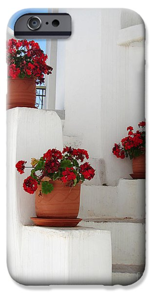 Geranium iPhone Cases - Greek steps  iPhone Case by Jane Rix