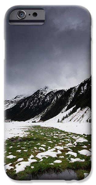 Snow iPhone Cases - Green iPhone Case by Gerd Doerfler