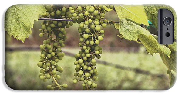 Young iPhone Cases - Green Grapes Spring Crop on the Vine iPhone Case by Ella Kaye Dickey