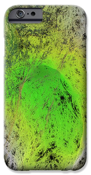 Green On Center Stage iPhone Case by Deborah Benoit