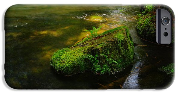 River View iPhone Cases - Green on the river iPhone Case by Jeff  Swan