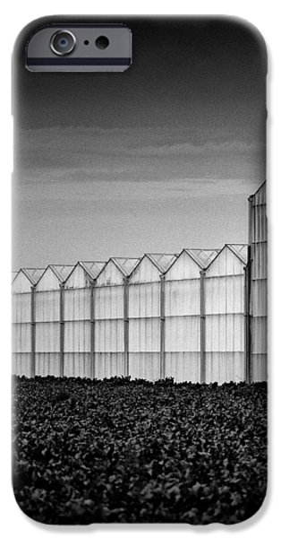 Greenhouse iPhone Case by Dave Bowman
