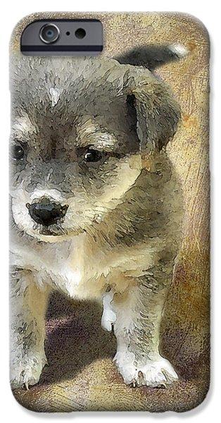 Pet Portraits Digital Art iPhone Cases - Grey Puppy iPhone Case by Svetlana Sewell