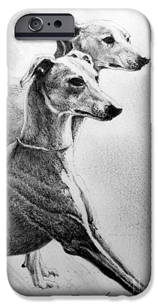 Rescued Greyhound iPhone Cases - Greyhounds iPhone Case by Roy Kaelin