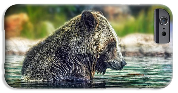 Walking Beat iPhone Cases - Grizzly Bear Enjoying a Dip in the Water  iPhone Case by Jim Fitzpatrick