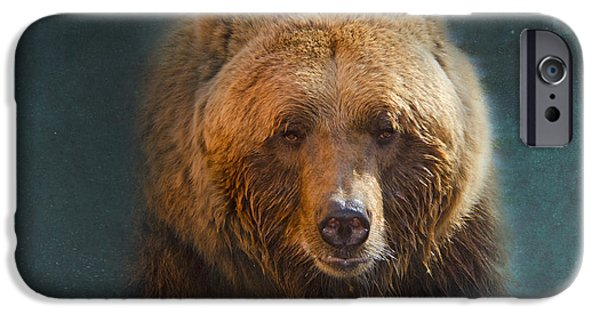 Slumber iPhone Cases - Grizzly Bear Portrait iPhone Case by Betty LaRue